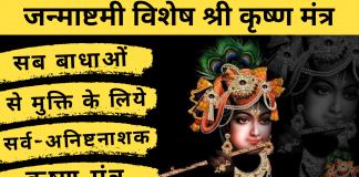 shree krishna mantra